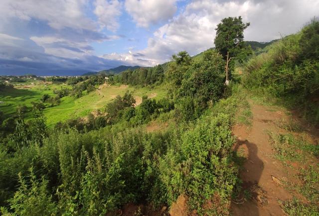 CHEAP LAND ON SALE  at Godawori, Salyan title=